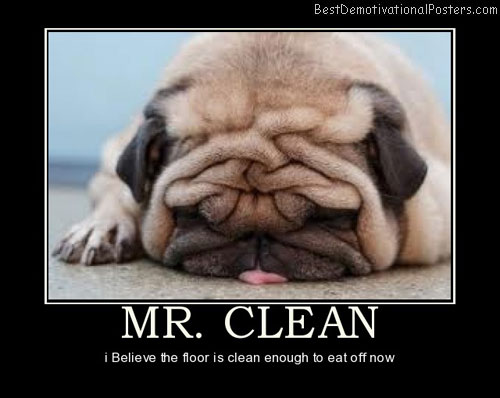 mr-clean-best-demotivational-posters