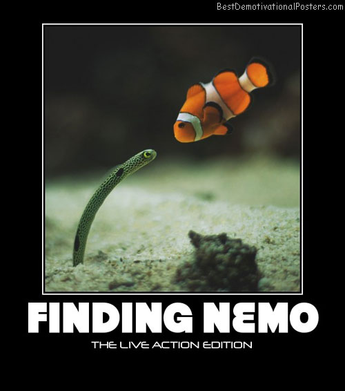 nemo-actors-disney-pixar-movie-best-demotivational-posters