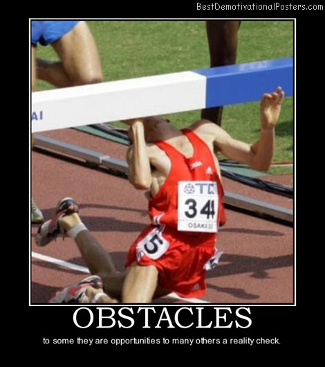 obstacles-stupid-fail-best-demotivational-posters