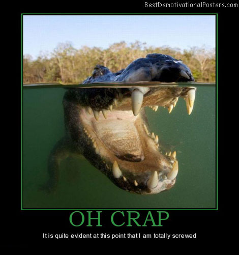 oh-crap-alligator-totally-screwed-evident-teeth-best-demotivational-posters