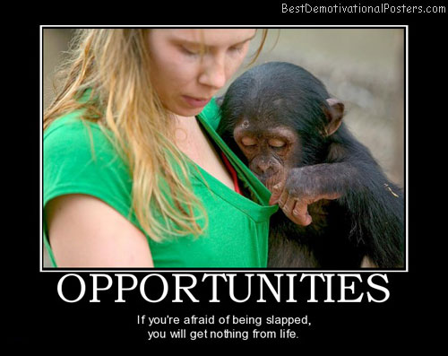 opportunities-blonde-monkey-best-demotivational-posters