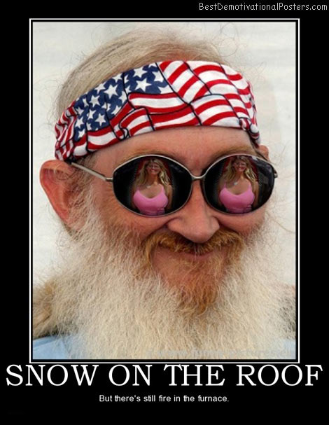 snow-on-the-roof-best-demotivational-posters