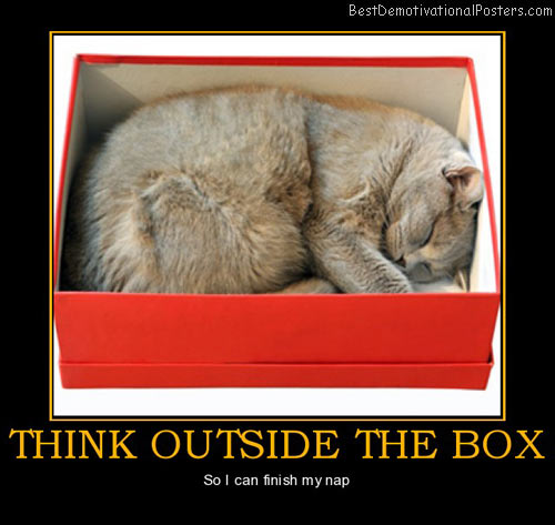 think-outside-the-box-cat-sleep-best-demotivational-posters