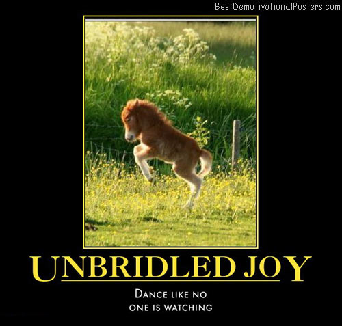 unbridled-joy-pony-dancing-happy-humor-best-demotivational-posters