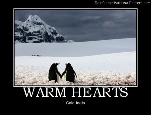 warm-hearts-penguins-snow-love-humor-best-demotivational-posters