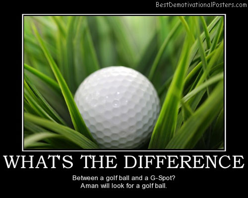 whats-the-difference-we-look-for-golf-balls-best-demotivational-posters