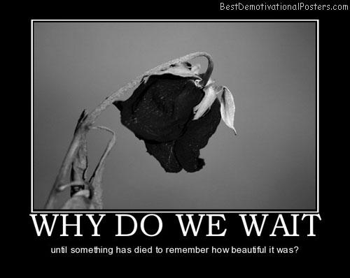 why-do-we-wait-regret-death-best-demotivational-posters