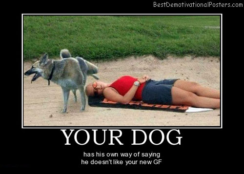 your-dog-perfume-girl-animals-best-demotivational-posters