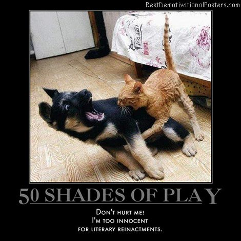 50-shades-of-play-bitey-dog-cat-best-demotivational-posters