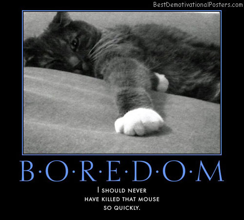 boredom-killed-mouse-best-demotivational-posters