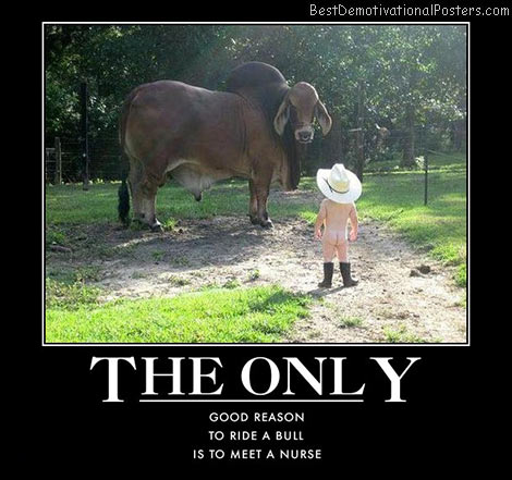 bull-cowboy-best-demotivational-posters