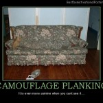 Camouflage planking