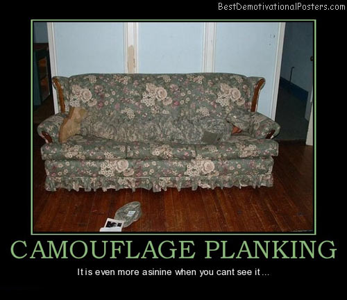 camouflage-planking-asinine-best-demotivational-posters