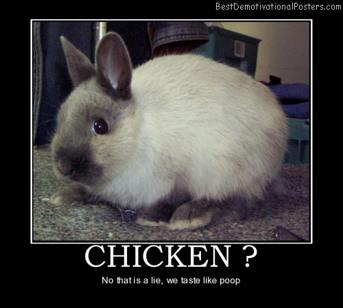 chicken-bunnie-best-demotivational-posters