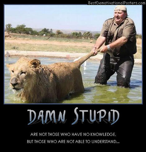 damn-stupid-enough-best-demotivational-posters