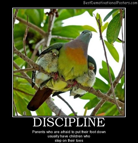 parents and discipline-best-demotivational-quote