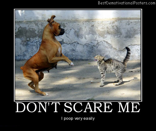 dont-scare-me-dog-cat-poop-best-demotivational-posters