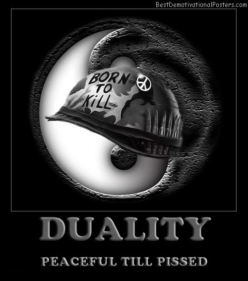 duality-peaceful-best-demotivational-posters