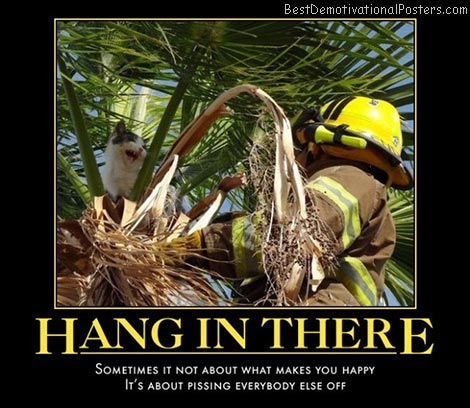 hang-in-there-kitty-cat-stuck-in-tree-best-demotivational-posters