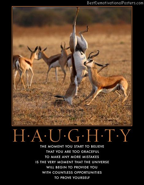 haughty-perfect-imperfection-best-demotivational-posters