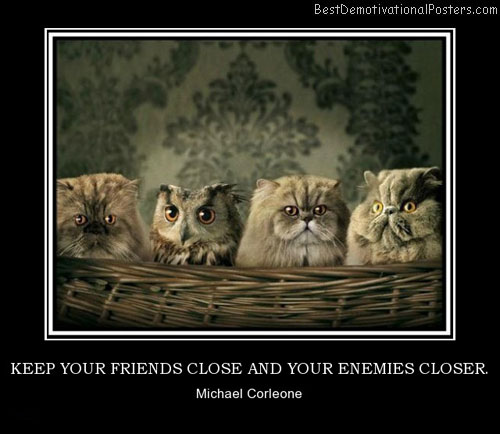 keep-your-friends-close-and-your-enemies-closer-friends-cats-best-demotivational-posters