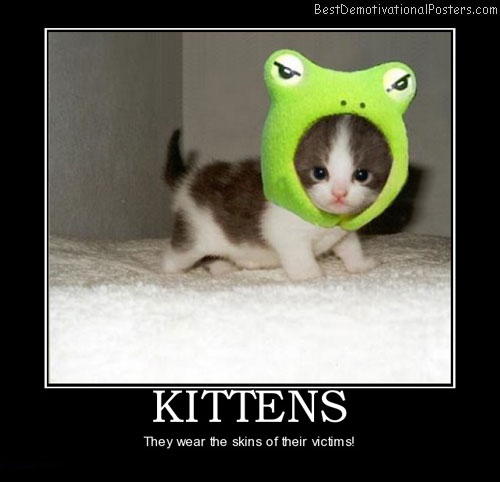 kittens-skins-best-demotivational-posters
