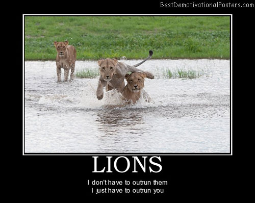 lions-wildlife-running-animals-best-demotivational-posters