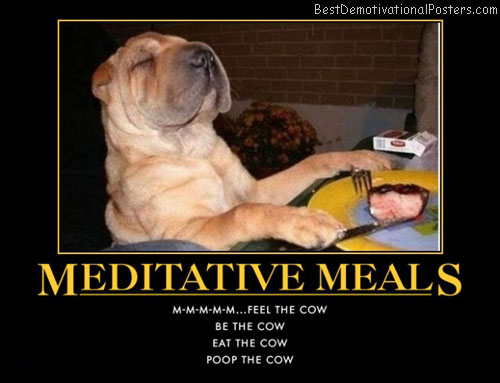 meditative-meals-dog-best-demotivational-posters