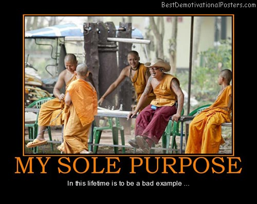 my-sole-purpose-example-best-demotivational-posters