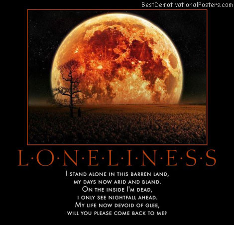 now-alone-in-this-world-lonely-nightfall-best-demotivational-posters