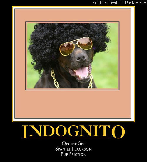 incognito-dog-best-demotivational-posters