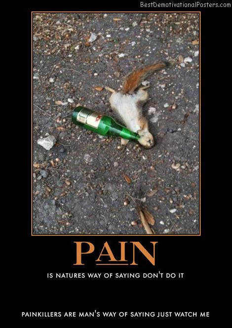 pain-little-drunken-squirrel-passed-out-best-demotivational-posters
