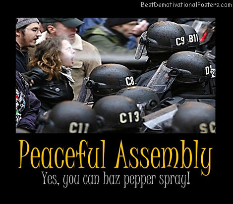 pepper-spray-peaceful-assembly-best-demotivational-posters