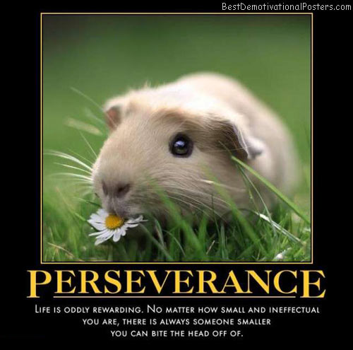 Persistence Motivational Quotes: Perseverance: Smal Vs Smaller