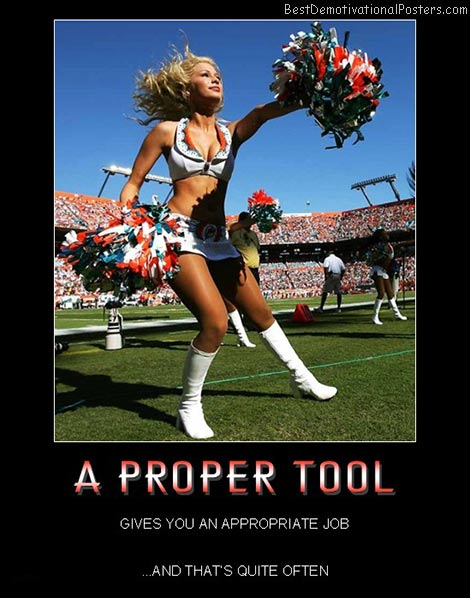 Cheerleaders-tool-job-related-best-demotivational-posters