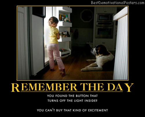 remember-refrigerator-light-best-demotivational-posters