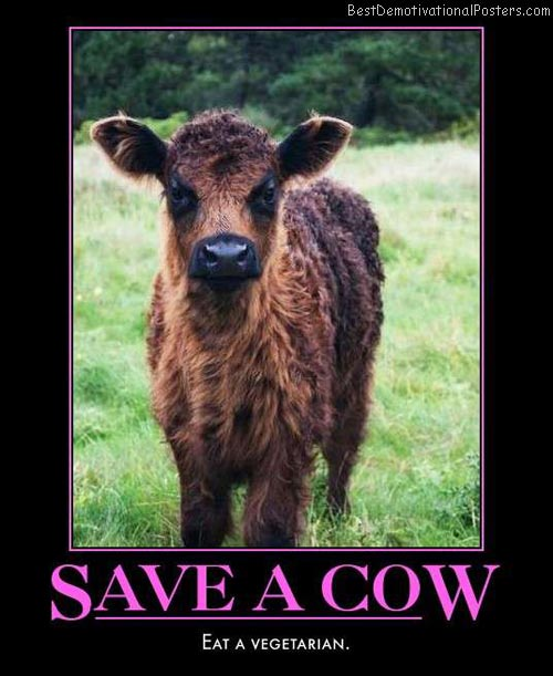 save-a-cow-eat-a-vegetarian-best-demotivational-posters