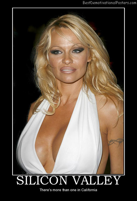 silicon-pamela-anderson-best-demotivational-posters