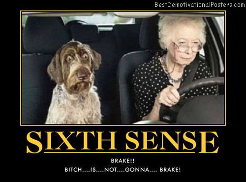 sixth-sense-bitch-best-demotivational-posters