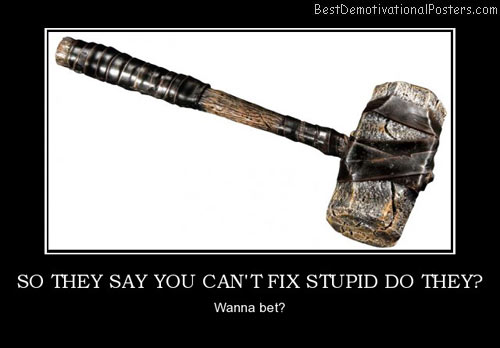 so-they-say-you-cant-fix-stupid-best-demotivational-posters