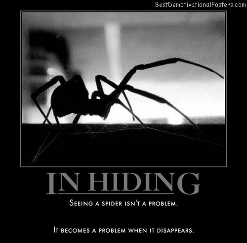 spider-problem-disappears-best-demotivational-posters