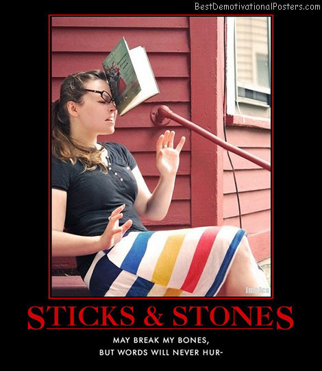sticks-stones-book-facebook-best-demotivational-posters