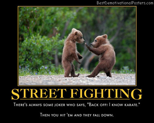 street-fighting-bears-funny-best-demotivational-posters