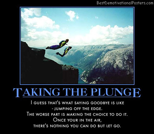take-the-plunge-goodbye-edge-air-best-demotivational-posters