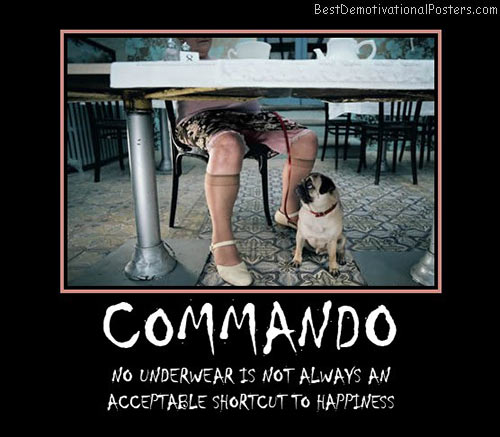 underwear-commando-happiness-best-demotivational-posters