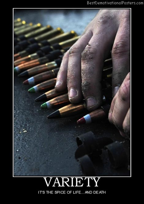 variety-bullets-best-demotivational-posters