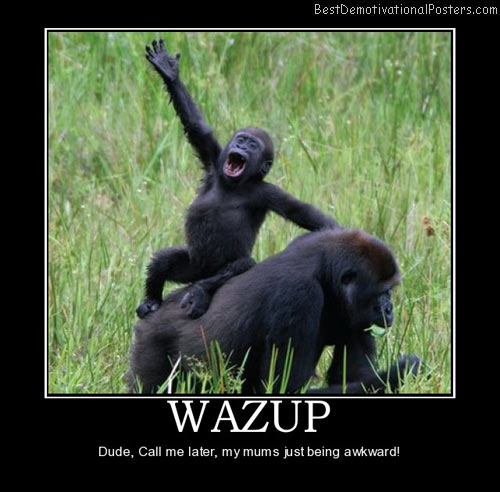 wazup-funny-jokes-animals-best-demotivational-posters