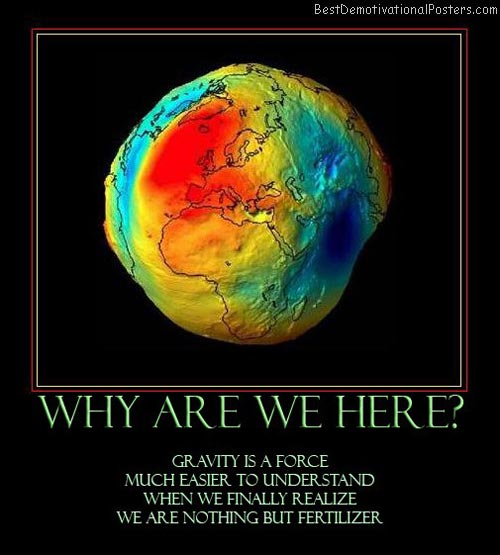 why-are-we-here-earth-gravity-purpose-best-demotivational-posters