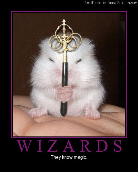 Wizards-mouse best-demotivational-poster