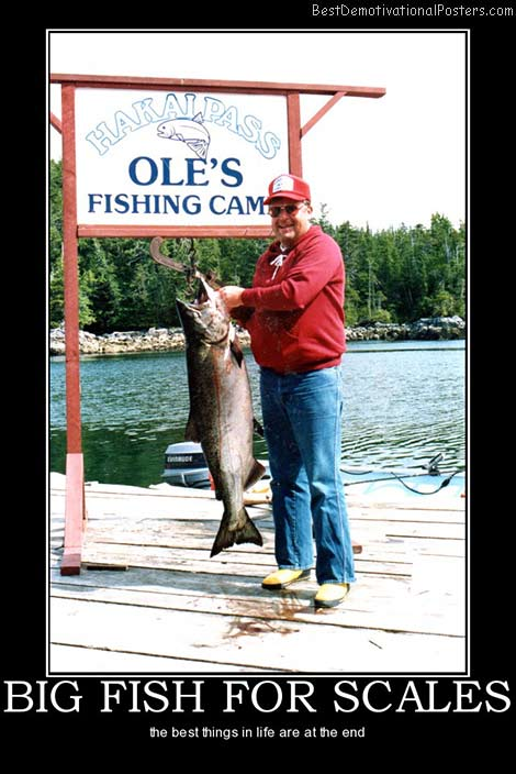 big-fish-for-scales-best-demotivational-posters